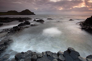 Giants Causeway at dusk, County Antrim, Northern Ireland, UK, June 2010. Looking out to sea  -  Peter Cairns / 2020VISION