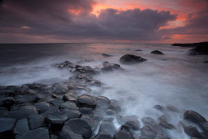 Giants Causeway at dusk, County Antrim, Northern Ireland, UK, June 2010. Looking out to sea. 2020VISION Book Plate.  -  Peter Cairns / 2020VISION
