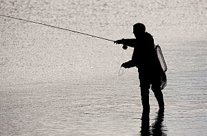 Silhouette of angler at dusk, Shetland Isles, Scotland, UK, June 2010. 2020VISION Exhibition. 2020VISION Book Plate.  -  Peter Cairns / 2020VISION