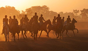 Young police riders training on horses at sunrise, Bhavnagar Police Station, Gujarat, India, January 2011  -  Kristel Richard