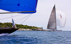 "J-Class yachts ""Velsheda"" and ""Ranger"" racing in the J Class Regatta, Newport, Rhode Island, USA, June 2011. All non-editorial uses must be cleared individually.  -  Billy Black"