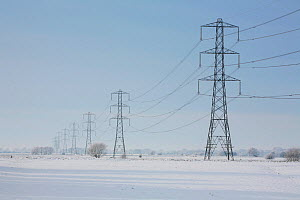 Winter landscape with National Grid electricity pylons crossing the Somerset Levels, Near Godney village, Somerset, UK. December 2010 - John Waters