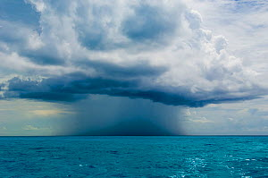 Isolated rain storm above the sea. Bahamas Sea, Bahamas, North America, August 2006.  -  Inaki Relanzon