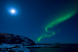 Northern lights in moonlit sky, northern Finland, March 2009  -  Lassi Rautiainen