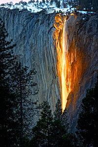 The snow at Horsetail Falls' begins to melt in mid-February, enabling the falls to resume once again. The clear sky and low sun angle ignite the rock wall during sundown. Yosemite National Park, Calif...  -  Diane McAllister