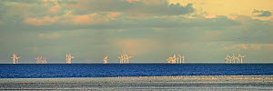 Wind turbines of a wind farm off the coast of The Wash with mudflats in the foreground, Snettisham, North Norfolk, UK, November 2010 - Steve Nicholls
