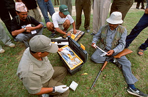 Scientists and dart shooter preparing equipment to dart Indian / Asian rhinoceros (Rhinoceros unicornis) for sedation and translocation to Royal Bardia NP, Chitwan NP, Nepal, 2003  -  JEFF FOOTT