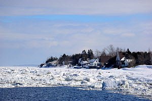 Ice floe melting along the shore of St Lawrence River. Berthier-sur-Mer, Quebec, Canada, January 2009.  -  Eric Baccega