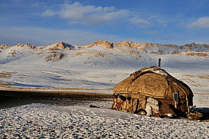 A yurt of a Kyrgyz shepherd family on the steppe. Naryn National Park, Kyrgyzstan, Central Asia, November 2009.  -  Eric Dragesco