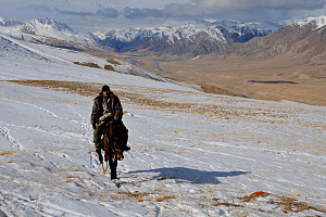 A man riding horse on an expedition to find Tien Shan Argali (Ovis ammon karelini) in vast steppe landscape. Naryn National Park, Kyrgyzstan, Central Asia, November.  -  Eric Dragesco