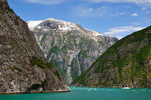 Steep rock walls of the Tracy Arm, carved out by glacial action over millions of years. Alaska, United States, July 2010. - Brent Stephenson