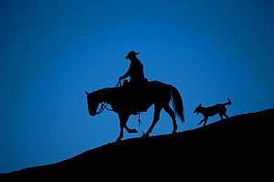 Horse and dog silhouetted at dusk. Bighorn Basin, Wyoming, USA. Model released - Jeff Vanuga