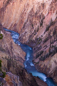 Grand Canyon of the Yellowstone and the Yellowstone River. Yellowstone National Park, Wyoming, USA, August 2009.  -  Jeff Vanuga