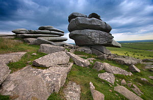 Cheese Rings rock formations. Bodmin Moor, Cornwall, UK, May 2009. - Ernie Janes