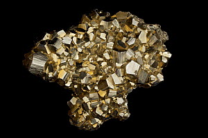Pyrite (FeS2, iron sulfide), known as 'Fool's Gold'. Formerly used in the production of sulfuric acid. Sample from Concepcion de Oro, Zacatecas State, Mexico. - John Cancalosi