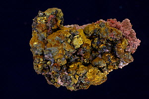 Chalcopyrite (CuFeS2, copper iron sulfide) (Golden variety), a major ore of copper. Sample from China.  -  John Cancalosi