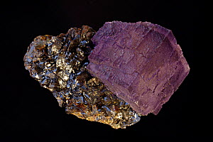 Fluorite (CaF2) (calcium fluoride) on Sphalerite (ZnS) (zinc sulfide).Fluorite is a source of fluorine-used in the manufacture of milk glass-as a flux for the steel industry and in refining of aluminu...  -  John Cancalosi