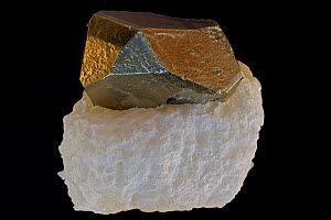 Pyrite on Talc. Pyrite (FeS2, iron sulfide) is popularly known as 'fool's gold', formerly used in the production of sulfuric acid. Talc is easily distinguishable by its extreme softness, used in lubri... - John Cancalosi