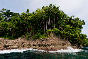 Tetepare Island (largest uninhabitated island in the South Pacific), Western Province, Solomon Islands, Melanesia, July 2010 ~ . NOT AVAILABLE FOR MAGAZINE USE IN GERMAN-SPEAKING COUNTRIES UNTIL 1ST J...  -  Jurgen Freund