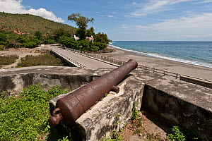 Original cannon in the Maubara Fort, used for defence during the Portuguese occupation, East Timor, August 2010.  -  Jurgen Freund