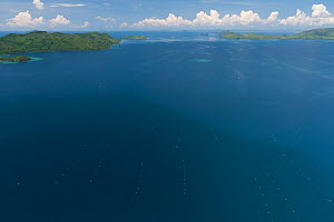 Aerial view of Oyster nets and cages for cultured pearl farming, the Jewelmer Pearlfarm, Philippines, May 2009  -  Jurgen Freund
