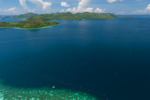 Aerial view of lines of Oyster cages at Pearl farm, Jewelmer Pearlfarm, Palawan, Philippines, May 2009  -  Jurgen Freund