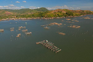 Aerial view of large numbers of fish pens choking Malampaya Sound, habitat of the highly endangered Irrawaddy dolphin, Palawan, Philippines, April 2010.  -  Juergen Freund