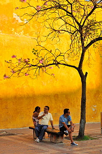 Relaxing in the street in Cartagena de Indias city, near the Clock Tower, Magdalena Department, Colombia, February 2011.  -  Luiz Claudio Marigo