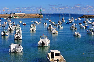 Fishing boats at the harbour of Saint-Quai-Portrieux. Cotes-d'Armor, Brittany, France September 2010. - Philippe Clement
