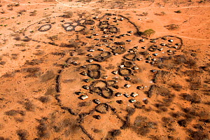 The parched home of a Samburu manyatta outlines the shape of the African continent from the air. The worst drought (2008-2009) in more than a decade killed most of the Samburu tribeman's livestock and...  -  Lisa Hoffner