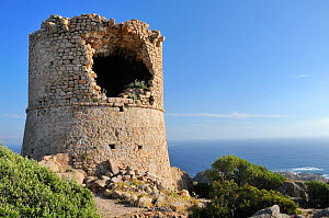 Ruined 17th Century Genoese watchtower perched on a granite outcrop. Cape Roccapina, overlooking the sea, southern Corsica, France, May 2010.  -  Nick Upton