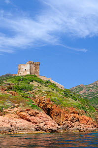 17th century Genoese watch tower perched on volcanic rock (rhyolite porphyry) headland, within a UNESCO World Heritage site and Corsica's National Park (Parc Naturel Regional de Corse). Corsica, Franc...  -  Nick Upton