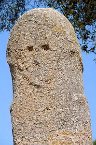 Close up of bronze age (c 3,500 years old) granite statue menhir standing stone at Filitosa with carved face. Corsica, France, June 2010. - Nick Upton