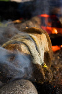 Socks steaming dry by a campfire. The West Coast Trail, Pacific Rim National Park, Vancouver Island, Canada, September 2010. - Matthew Maran