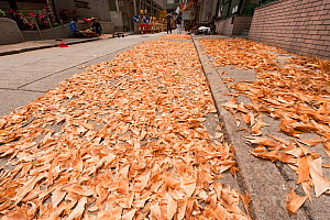 Sharks' fins laid out to dry on the streets of Hong Kong's Sheung Wan District, April 2009. - Jurgen Freund