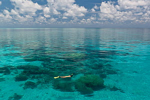 Flat calm seas of Tubbataha Reef, with a snorkeler swimming at the surface. Tubbataha National Marine Park, Philippines, April 2009.  -  Jurgen Freund