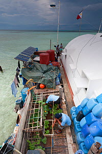 Tubbataha reef rangers at home on their station, tending to the vegetable garden with laundry drying behind. Tubbataha National Marine Park, Philippines, April 2009. - Jurgen Freund