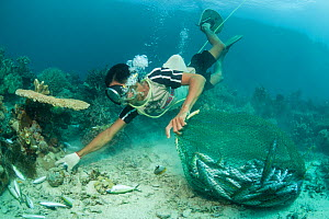 Fisherman collecting freshly blasted or dynamited schooling fish in the reef. Phillipines, April 2009.  -  Jurgen Freund