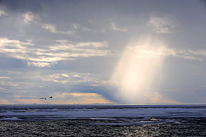 Light rays breaking through clouds above the melting icepack. Foxe Basin, Nunavut, Canada, July 2011. - Eric Baccega