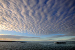 Clouds in a ripple pattern over melting icepack. Foxe Basin, Nunavut, Canada, July 2011. - Eric Baccega