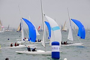 Start of Dragon fleet on day six of Aberdeen Asset Management Cowes Week in Cowes, Isle of Wight, England, August 2011.  -  Rick Tomlinson