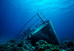 Shipwreck of the small freighter 'Ora Verde' that sank in 1980, Grand Cayman Island, Caribbean Sea  -  Jeff Rotman