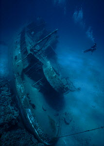 Looking down on the shipwreck of the small freighter 'Ora Verde' that sank in 1980, Grand Cayman Island, Caribbean Sea Model released.  -  Jeff Rotman