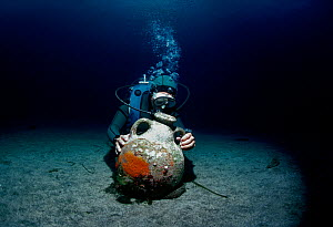 Diver discovers Roman Amphora on sea floor. Ustica Island, Italy, Mediterranean Sea Model released.  -  Jeff Rotman