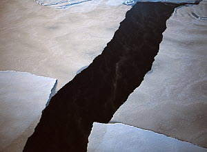 Aerial view of pancake ice sheet cracking and melting in Hudson Bay, Manitoba, Canada, December 2004 - David Woodfall
