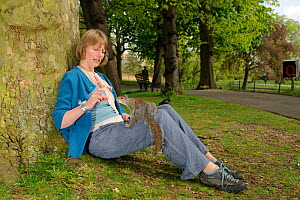 Woman leaning against tree, feeding Grey Squirrel (Sciurus carolinensis) in parkland, Regent's Park, London, UK, April 2011, Model released. - Terry Whittaker / 2020VISION