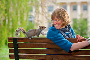 Woman sitting on bench beside Grey Squirrel (Sciurus carolinensis) begging for food in parkland, Regent's Park, London, UK, April 2011, Model released.  2020VISION Exhibition. 2020VISION Book Plate. - Terry Whittaker / 2020VISION