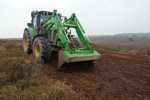 RSPB reserves staff scraping heath surface layer and litter at Dunwich Heath National Trust reserve, Suffolk, UK. This promotes a mosaic of new heather growth on the mature heath, while simultaneously... - Chris Gomersall / 2020VISION