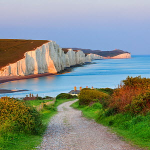 Path towards the coastguard cottages and the Seven Sisters Chalk Cliffs. Seaford Head Nature Reserve, East Sussex, UK, May 2009. - Guy Edwardes