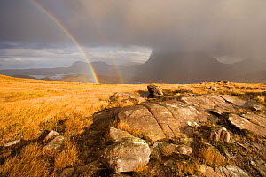 "View from Stac Polliadh with double rainbow and rain clouds over Cul Mor, Coigach, Highland, Scotland, November. Photographer quote: ""Standing on a rain lashed and windswept mountain side all morning... - Mark Hamblin / 2020VISION"